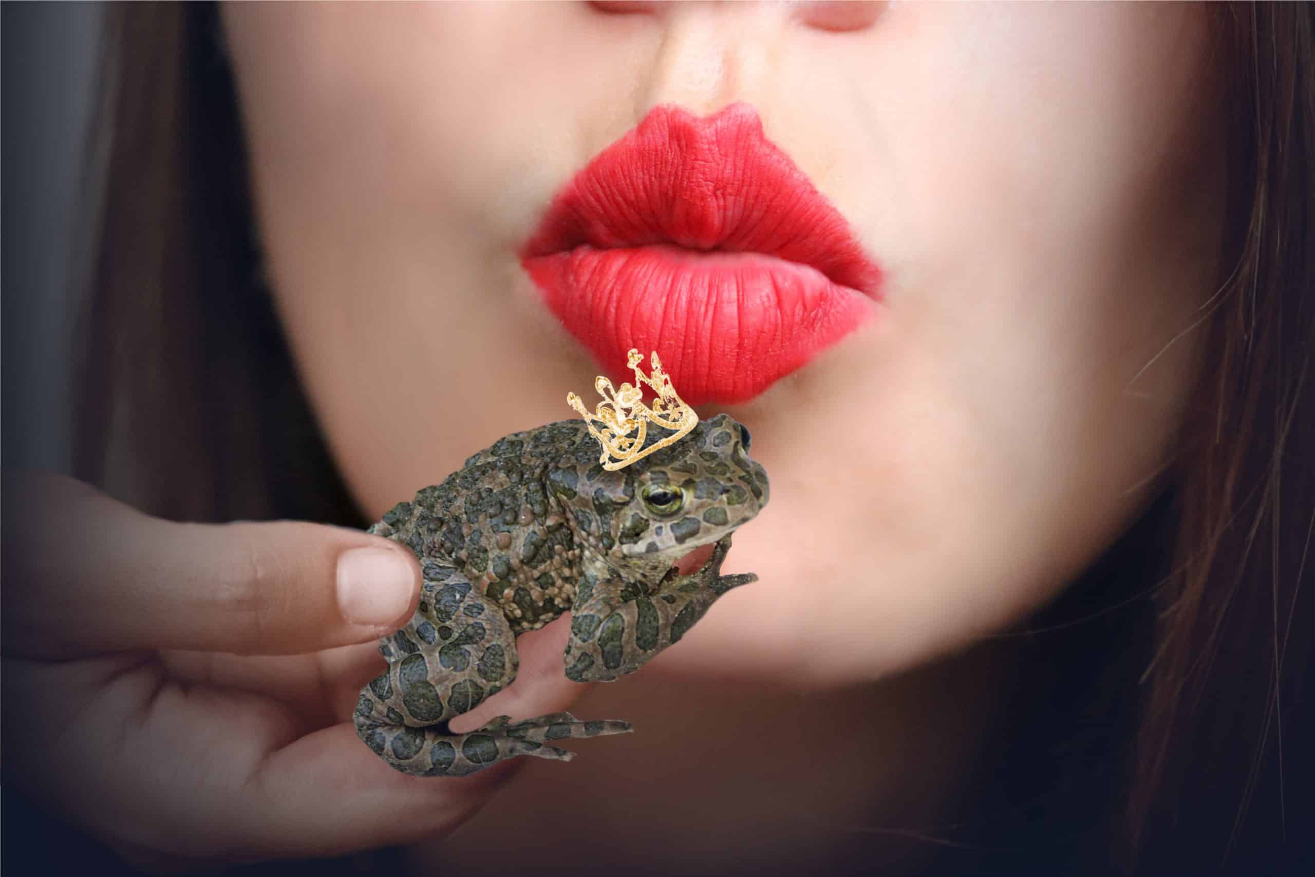 Photo of frog with golden crown waiting for kiss